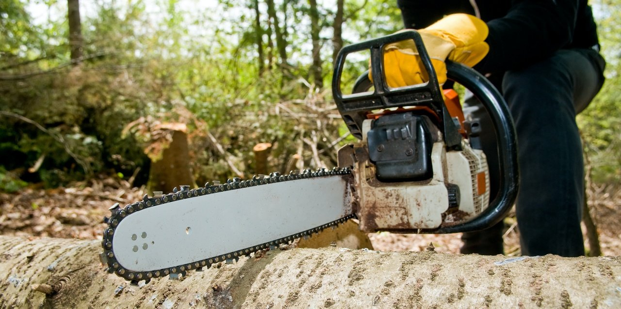 What Is The Best Commercial Chainsaw