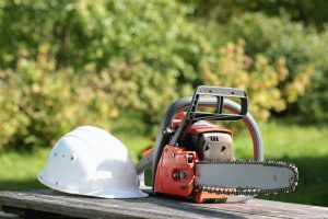 Free online chainsaw safety course