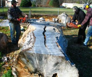 Best Chainsaw Mill For The Money